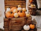 Őszi tökös hétvége a Bukovszki Birtokon