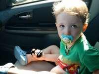 A csütörtökön elveszett kisfiú édesanyjával beszélgettünk, hogy tűnik el egy 2 éves?