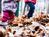 Persze, hogy pont az őszi szünetre romlik le az idő...
