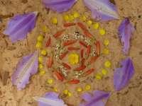 Kreatív jóga és kézműves tábor Renivel