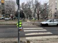 aa1c754109de Zebra zászlók már Kecskeméten is - életmentő ötlet lehet
