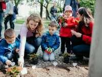 """Anyák napi virágültetés a Főtéren a Kecskemétimamival és """"Gyereket a magasba"""" 2021"""