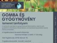 GOMBA és NÖVÉNYISMERET - ingyenes interaktív tanfolyam