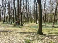 Kerekerdő Kalandpark