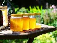Kecskeméti óvodáknak 500 Ft/kg áron ajánlott fel mézet egy kecskeméti méztermelő - Ne adjunk a gyerekeknek mézhelyettesítőket!