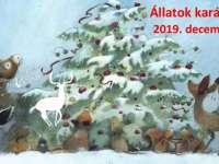 Állatok karácsonya a Kecskeméti Vadaskertben