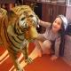 Varázsolj 3D állatokat a szobádba, csupán a mobilod segítségével!